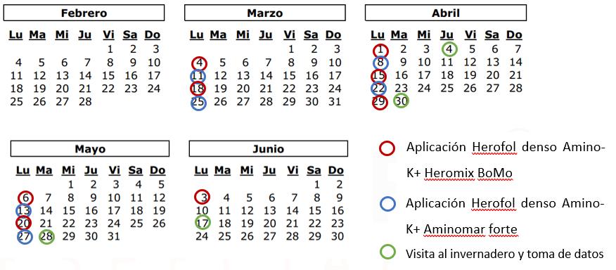 calendario del ensayo técnico
