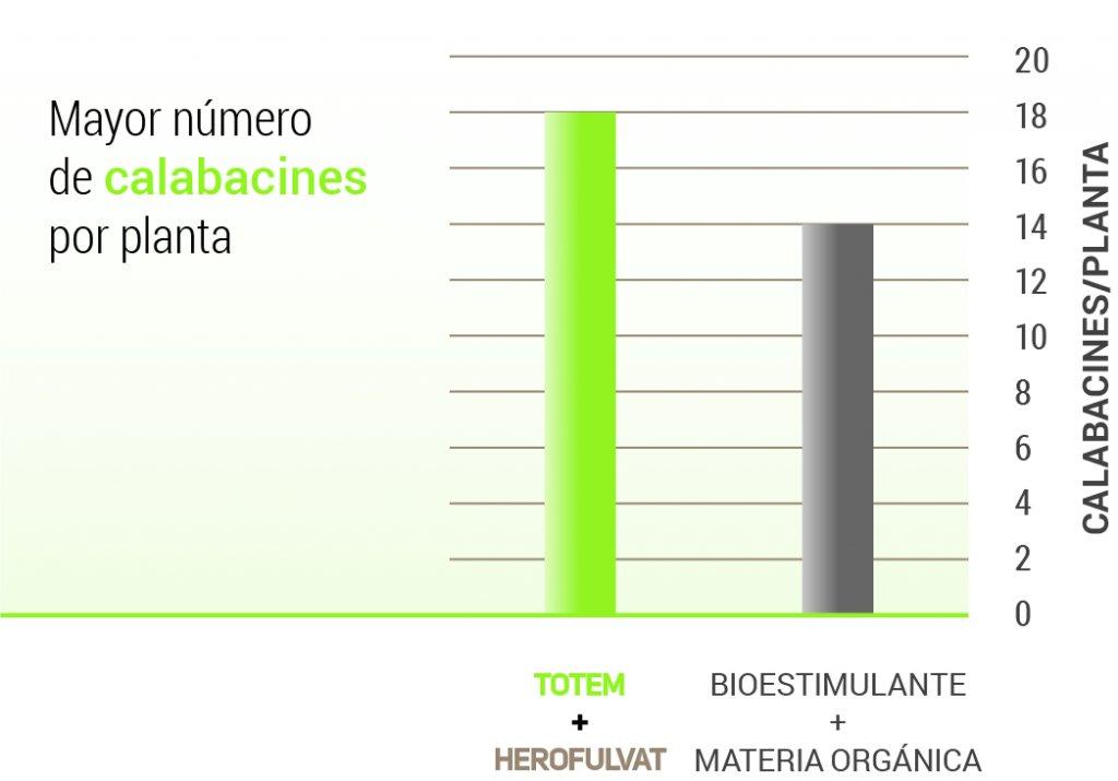 Mayor número de calabacines por planta, hasta 4.
